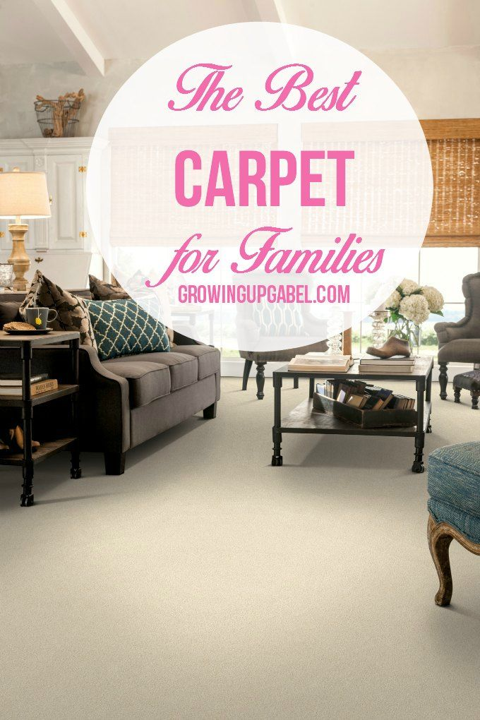 Looking for the best carpet for your family? Check out this pet-proof, kid-proof, water-proof carpet!