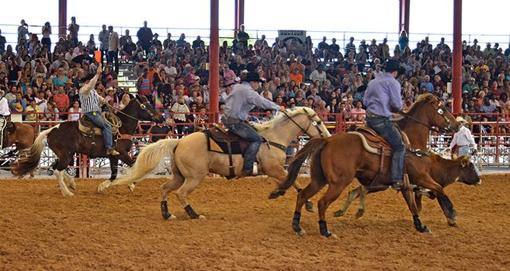 The 78th Annual Orange Blossom Festival Rodeo At The