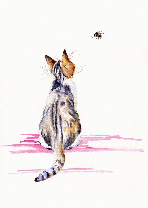 Bee-mused: a kitten thoughtfully watches her first bumble-bee. FineArtAmerica: Debra Hall / GreyPepperArt.
