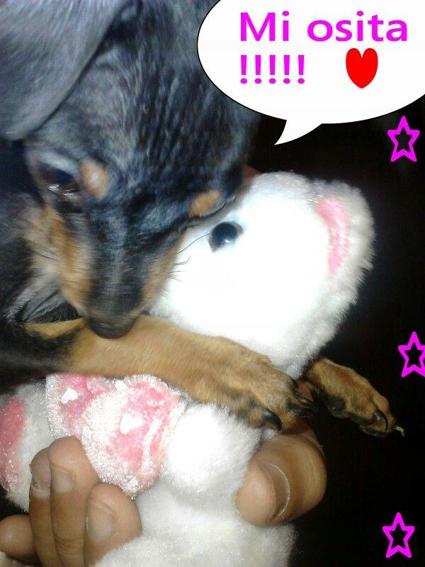 Chabelita and her teddy bear .