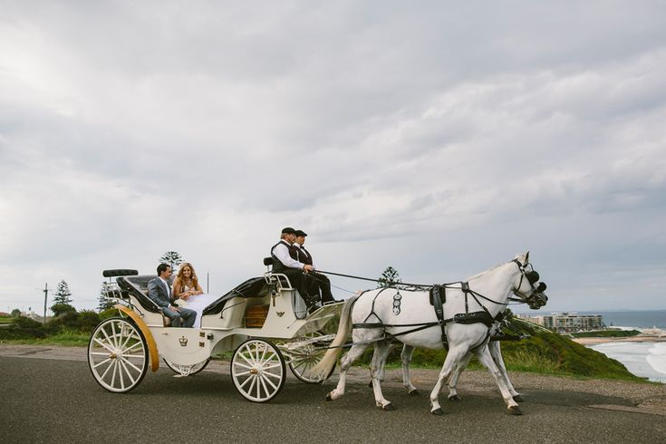 Newcastle wedding horse and carriage. Image: Cavanagh Photography http://cavanaghphotography.com.au