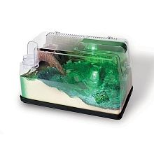 Backyard Safari Deluxe Wet & Dry Lighted Habitat