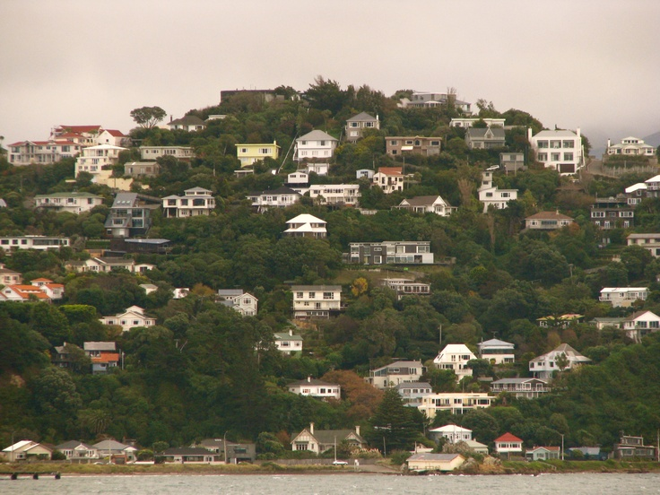 City On A Hill, Wellington NZ We lived in Grafton Road - I think just off left of picture.