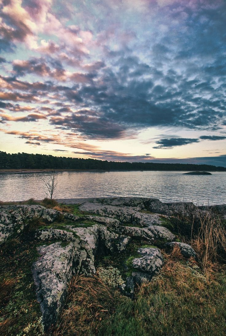 Elements of nature - Landscape from Hanko, Finland.