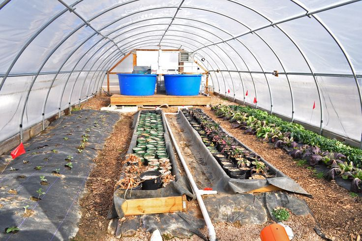 double layer hoop house - Google Search