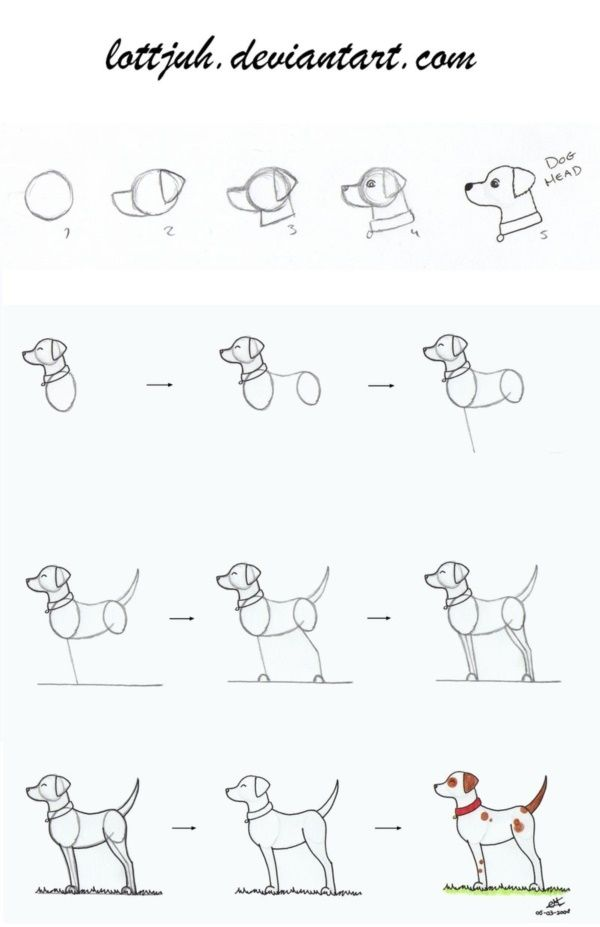 How To Draw A Dog Step By Step Easily 35 Ideas Dog Drawing