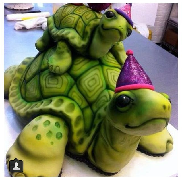 27 best Hamster and tortoise cakes images on Pinterest Tortoise