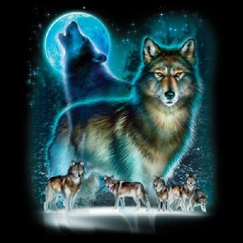 Moon Wolf  T Shirt  Item no. 221b by AlwaysInStitchesCo on Etsy