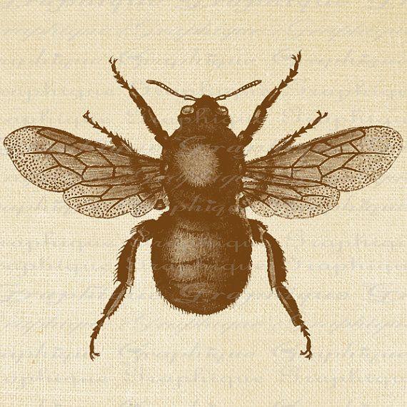 Large Bumble Bee Digital Image Download Sheet Transfer To Pillows Totes Tea Towels Burlap No