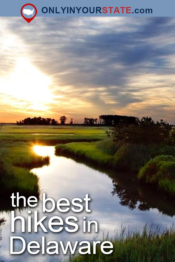 Travel | Delaware | Attractions | USA | Natural Beauty | Outdoors | Adventure | Hiking | State Parks | Trails | Easy Hikes | Things To Do | Hidden Gems | Waterfront | Forest | Greenway | Wilmington | Brandywine | Canal | Beaches | Oceanfront | Wildlife | Boardwalks | Gardens | Rehoboth Beach | Reservoir