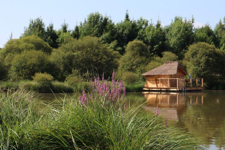 """Wooden house """"Ile des Pins"""" on pond. Village Flottant de Pressac (Poitou, France)."""