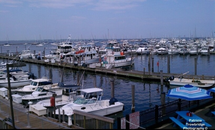 23 best ideas about atlantic highlands nj on pinterest for Atlantic highlands fishing