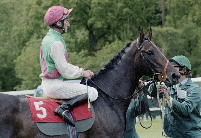 Dancing Brave (Rated 140) - Winner of the 2000 Guineas, Eclipse Stakes, King George and Prix de l'Arc de Triomphe in 1986. He was retired to stud after suffering an injury in the Breeders Cup Turf and was syndicated with an estimated value of 14 million pounds!