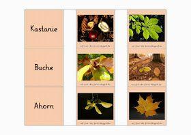 Baum-Memory