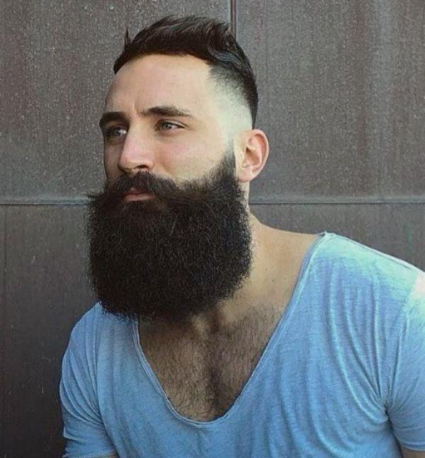 long beard gay