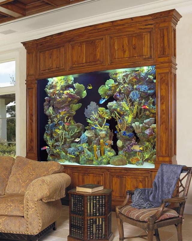 Wood Framed Built In Aquarium Fish Tank Aquariums Fish