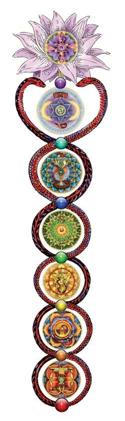 Seven Chakra Kundalini Rising