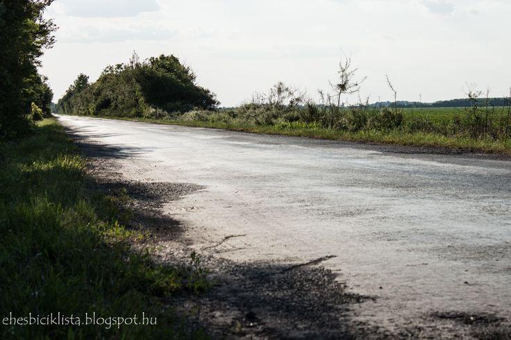 Road to Kübekháza