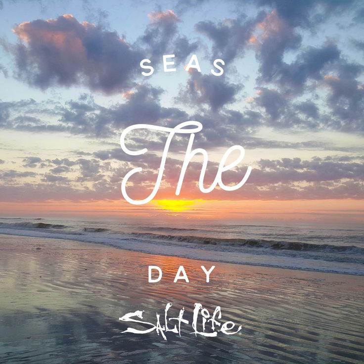 Seas the day #SaltLife