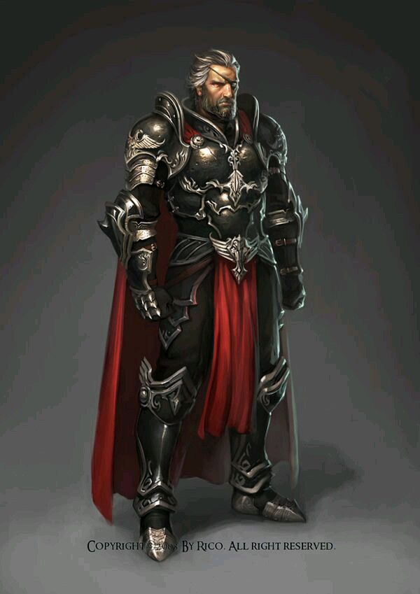 Um guerreiro oficial do reino que ostentar uma armadura deste nível deve possuir uma Patente de Protetor Real ou superior.