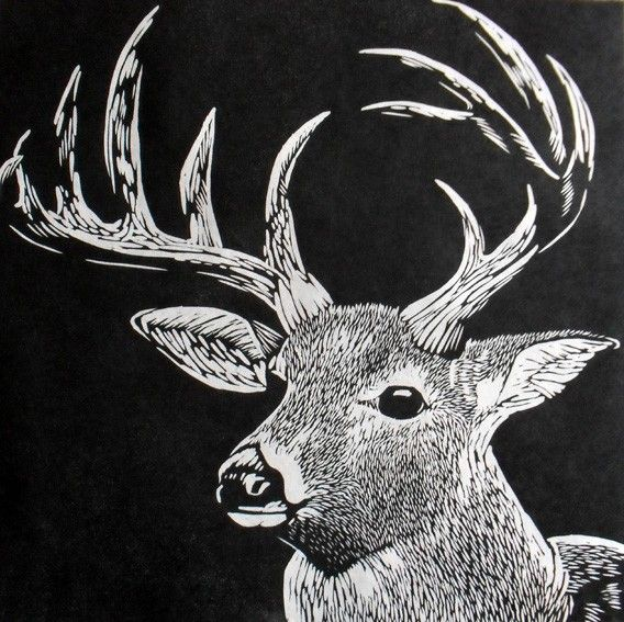 89 best images about Printmaking  Animals  Creatures on