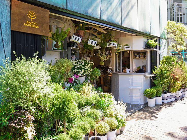 SHOPLIST | SOLSO architectual plant&farm