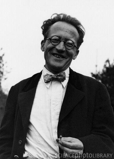 """12/08/1887 Nace Erwin Schrödinger quien ganó el Premio Nobel de Física en 1933 por la creación de la """"Ecuación de Schrödinger"""", una fórmula matemática de las ondas mecánicas que todavía es utilizada por matemáticos en la teoría cuántica"""