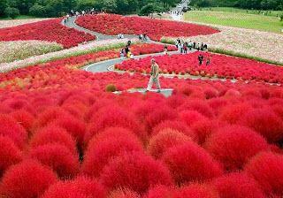 Φανταστικό πάρκο-κήπος στην Ιαπωνία! | Σπίτι - Κήπος | Φτιάξτο μόνος σουΣπίτι - Κήπος | Φτιάξτο μόνος σου