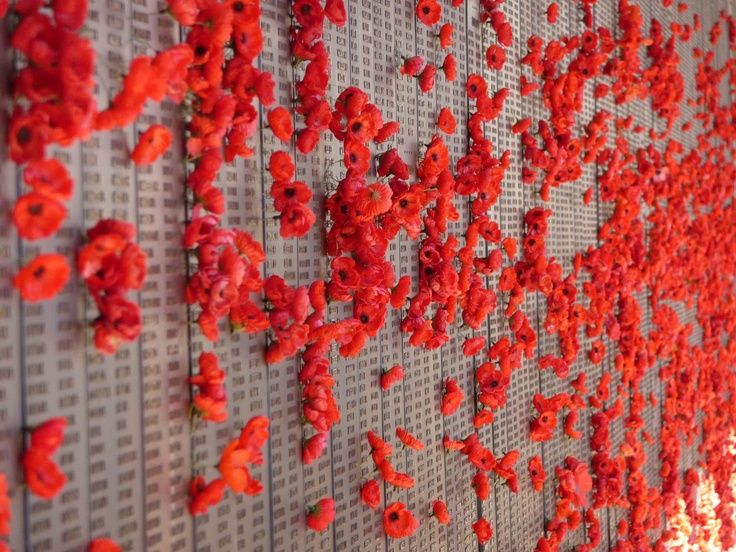 Poppy's, in rememberance of our lost soldiers, National War Memorial, Australian Central Territory