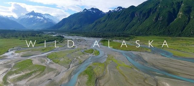 'The power of imagination makes us infinite' - John Muir.  A visual nature essay from the costal wilderness of Southern Alaska; water, mist, mountains, glaciers, icebergs, whales, fjords, forests and bears. Wild Alaska was filmed during an expedition in July 2015.  From the Wild series created by Aliscia Young & Richard Sidey: https://vimeo.com/channels/967899   PHOTOGRAPHY & EDITING Aliscia Young | www.alisciayoung.com | www.facebook.com/AlisciaYoungPhotography Richard Sidey | www.r...