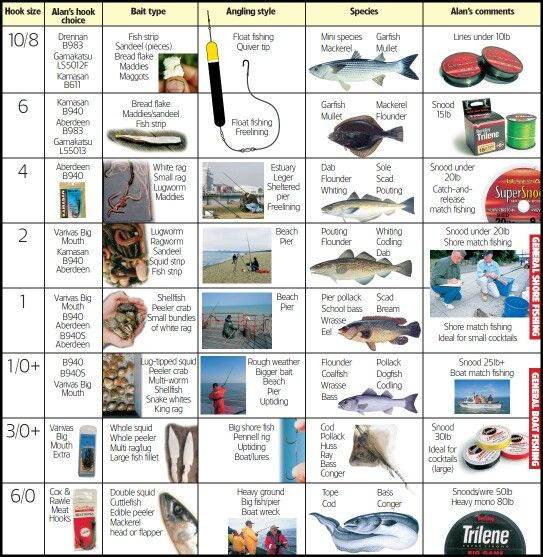 Bait target and charts on pinterest for Fish hook sizes