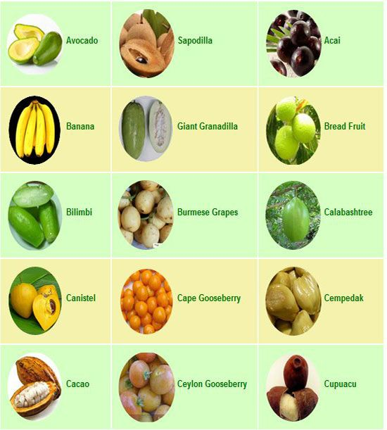 passion fruit tree list of healthy fruits for weight loss