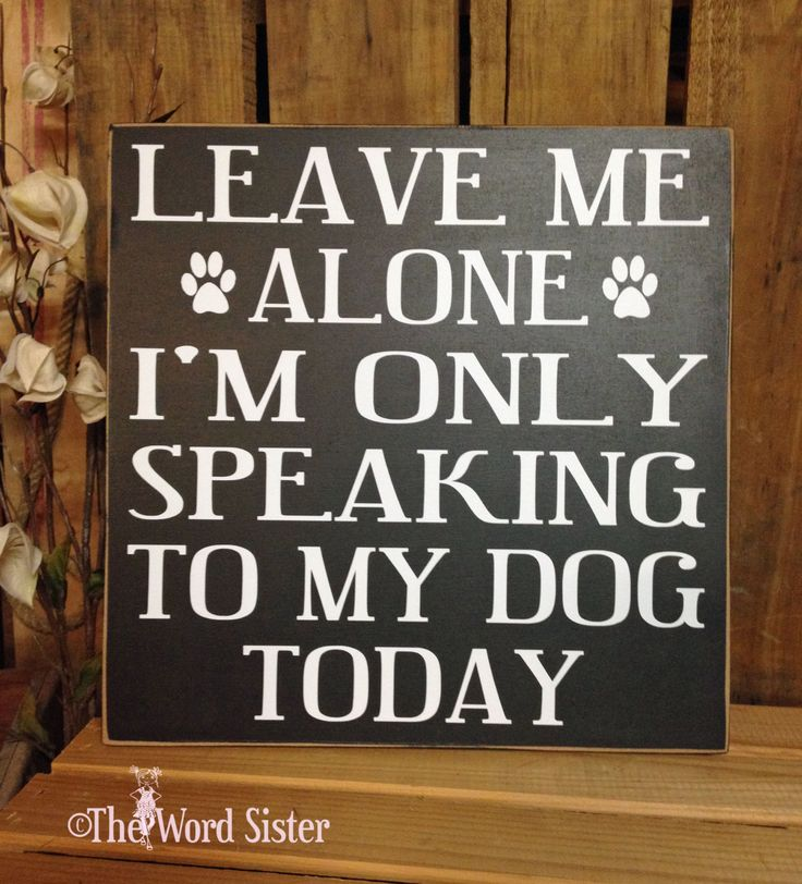 "Dog Decor, Funny Dog Signs, Dog Decor, ""Leave Me Alone I'm Only Speaking To My Dog Today"" 12""X12"" Wood Sign, Dog Signs For A Home, Dog Lover by TheWordSister on Etsy https://www.etsy.com/listing/184982406/dog-decor-funny-dog-signs-dog-decor"