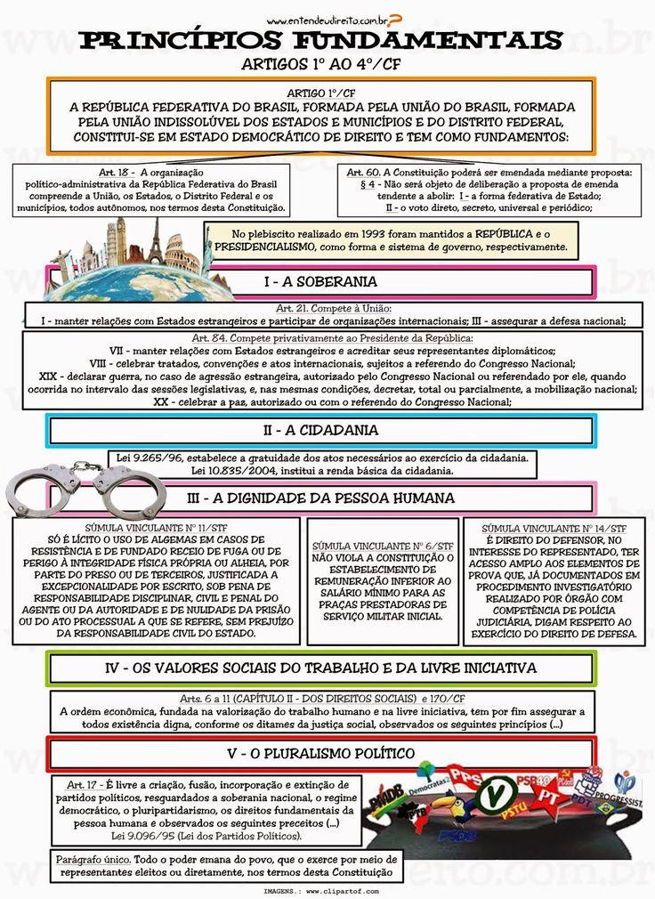 PrincíPios Fundamentais - Artigo 1º Ao 4º
