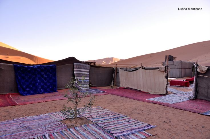tent camp in the sahara. the room.