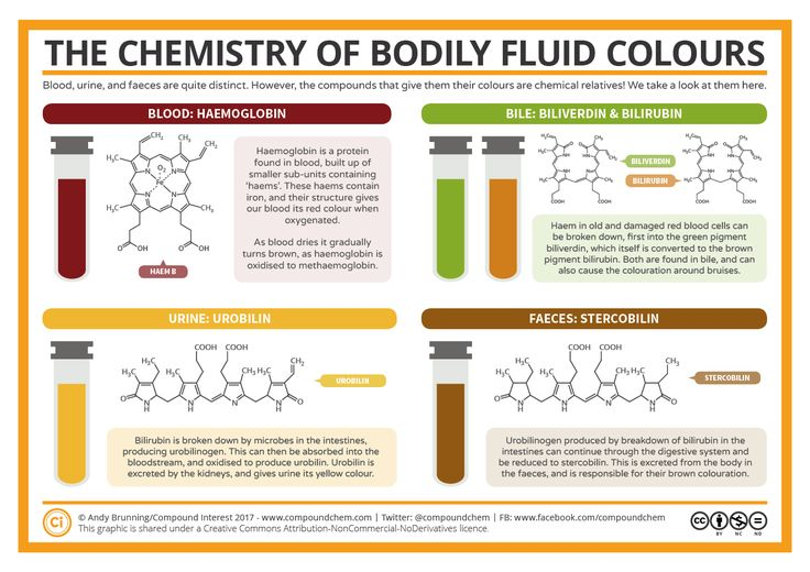 A particular bodily fluid featured in the political newsearlier this week, which got me thinking about the chemical causes behind the colours of the waste products we expel from our bodies.&n…