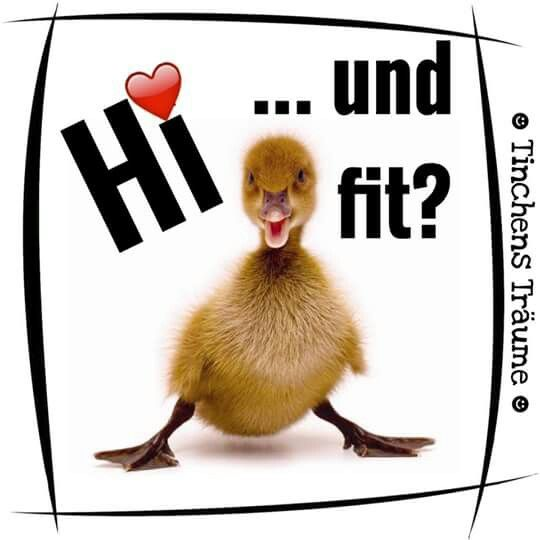 Good Morning My Sweet In German : Best images about guten morgen on pinterest good