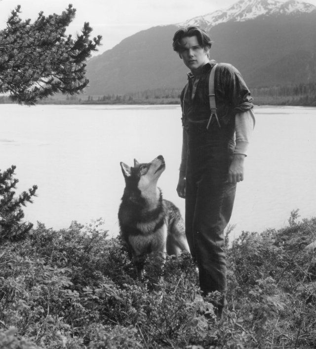 Still of Ethan Hawke in White Fang (1991)