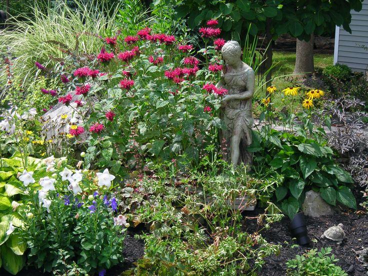 114 best butterfly gardens images on pinterest flowers - Butterfly and hummingbird garden designs ...