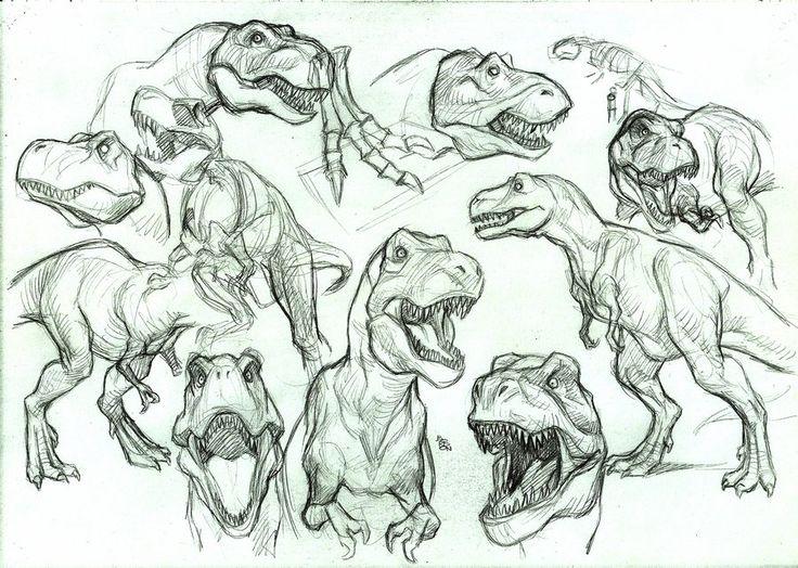 some T-rex studies by bordon.deviantart.com on @deviantART