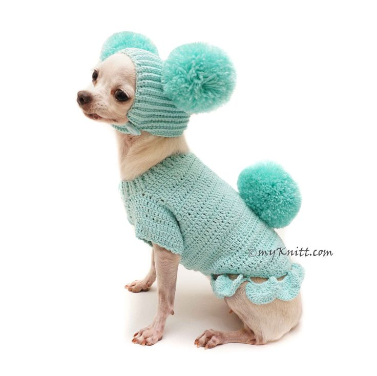 Teal Color Cotton Dog Winter Clothes with Pom Pom Dog Hats by Myknitt Designer Dog Clothes.  #Chihuahuasweaters #chihuahuaclothes #customdogclothes #crochetdogclothes #crochetdoghats #doghats #designerdogclothes #myknitt