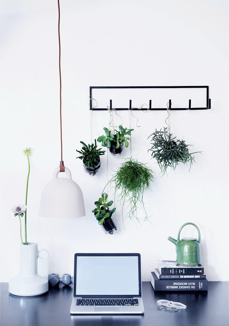 Hæng dine planter op | Boligmagasinet.dk