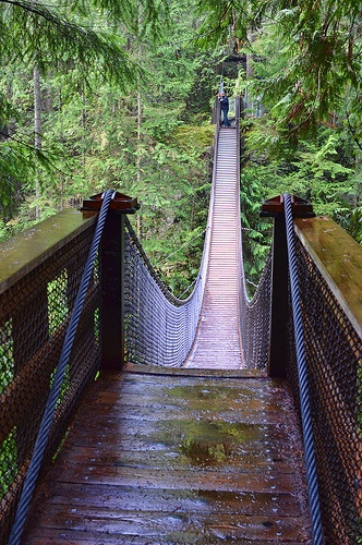 Photo of the Day: April 5, 2013 - Suspended. Lynn Canyon, North Vancouver, BC.