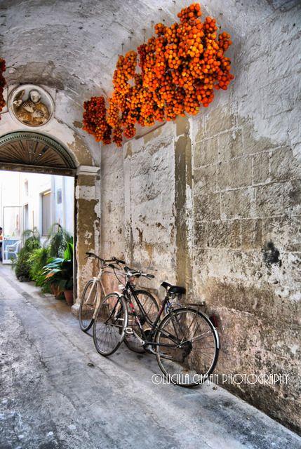 Muro Leccese, Lecce, Puglia.https://www.facebook.com/LucillaCumanPhotography - Scopri di più sul Salento su http://www.nelsalento.com