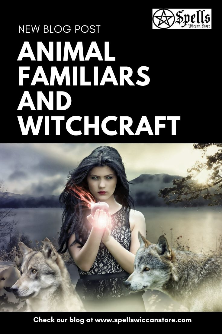 Animal Familiars and Witchcraft | Modern Witchery | Wiccan spells