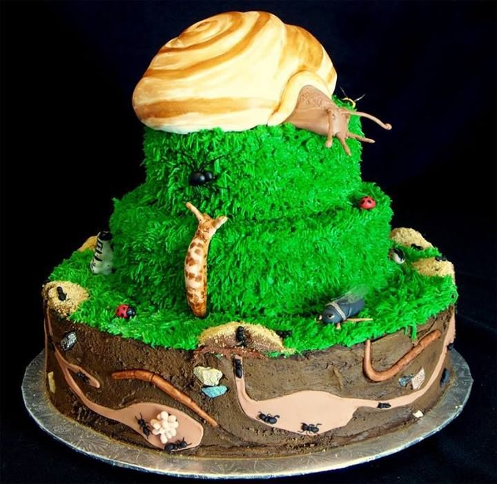 All Boy Cake Starting a Catering Business Start your own catering business http://www.startingacateringbusiness.com