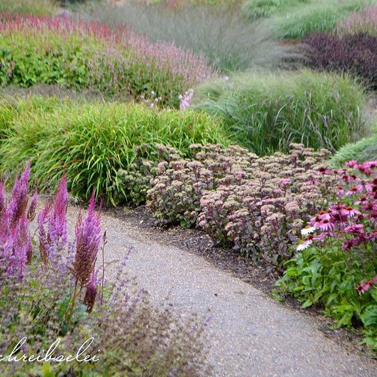 17 best images about planting on pinterest gardens for Piet oudolf planting schemes