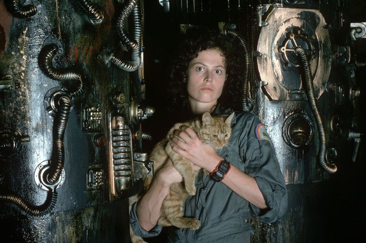 Sigourney Weaver in Alien (1979)Film, Aliens Movie, Orange Cat, Aliens 1979, Weaver Aliens, Scifi, Sci Fi Movies, Ripley, Sigourney Weaver