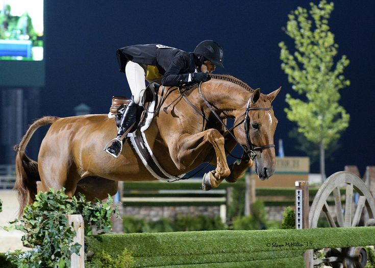 "Liza Boyd and Brunello clear the final 4'9"" oxer. Shawn McMillen Photography."