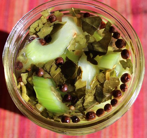Quick-Pickled Celery: Cheap, Always in Season, Awesome   SheKnows